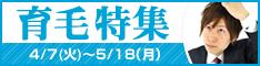 夏〜秋が需要期のピーク!「育毛特集」
